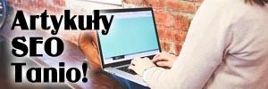 SEO Zdobywanie tysięcy nowych klientów z internetu. Jak końcu najlepiej jak wypromować wypromować sklep internetowy