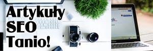 Piszemy SEO na bloga Zareklamowanie oferty dla nowych klientów w internecie. Rodzaje kampanii Adwords